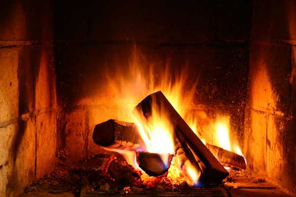 best electric fireplace log reviews