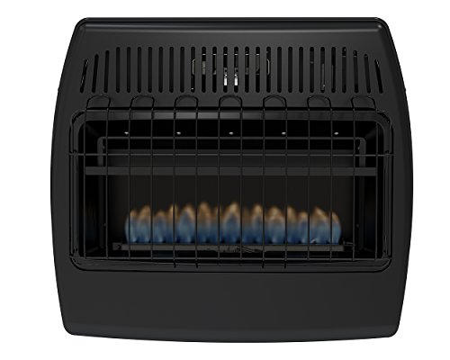 10 Best Propane Heater For Garage Reviews For 2018